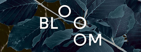 Bloom Festival logo